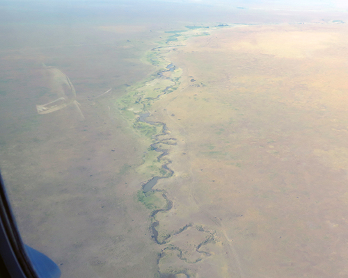 View from the air of the Mara River in the Serengeti